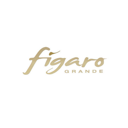 Figaro Salon